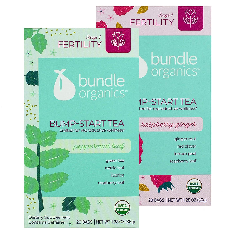 Bundle Organics Bump-Start Tea, Stage 1 Fertility, 20 Tea Bags (Pack of 2)  (Peppermint Leaf)