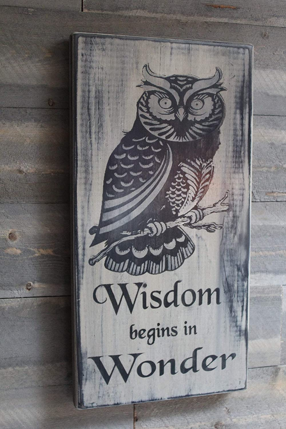 Brand Free Wisdom Begins in Wonder Wood Sign Owl Quote Sign Wiccan Pagan Nature Sign