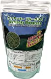 福花園種苗 西洋芝種子 ケンタッキーブルーグラス 1L詰 211710