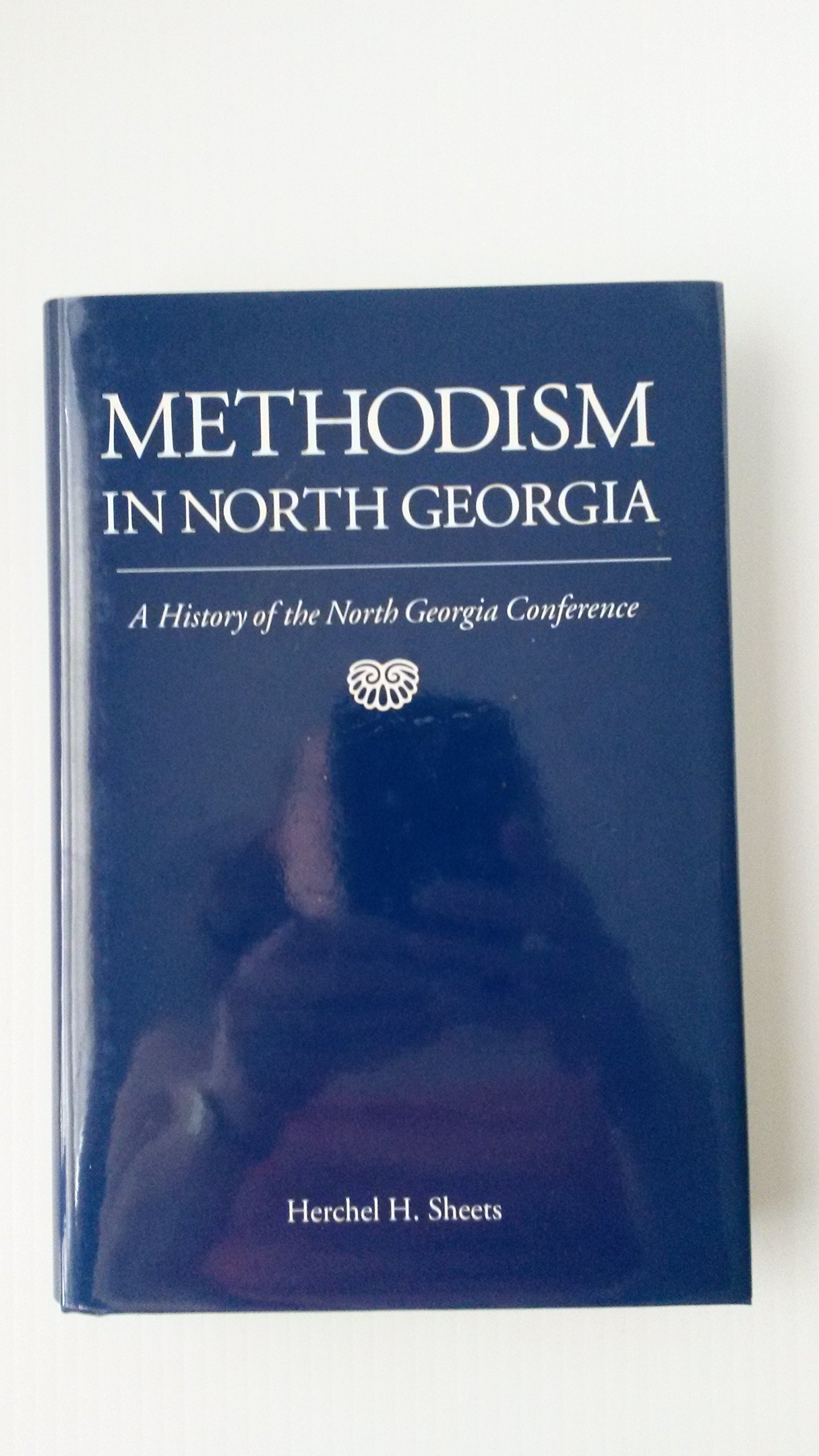 Download Methodism in North Georgia: A History of the North Georgia Conference pdf