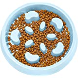 UPSKY Slow Feeder Dog Bowl Fun Feeder No Chocking Slow Feeder Bloat Stop Dog Food Water Bowl with Funny Pattern
