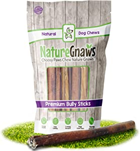 Nature Gnaws Bully Sticks for Large Dogs - Premium Natural Beef Bones - Thick Long Lasting Dog Chew Treats for Aggressive Chewers - Rawhide Free - 12 Inch