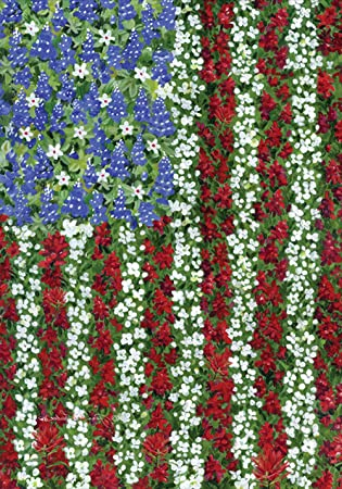 Amazon toland field of glory decorative america patriotic toland field of glory decorative america patriotic flower red white blue usa produced mightylinksfo
