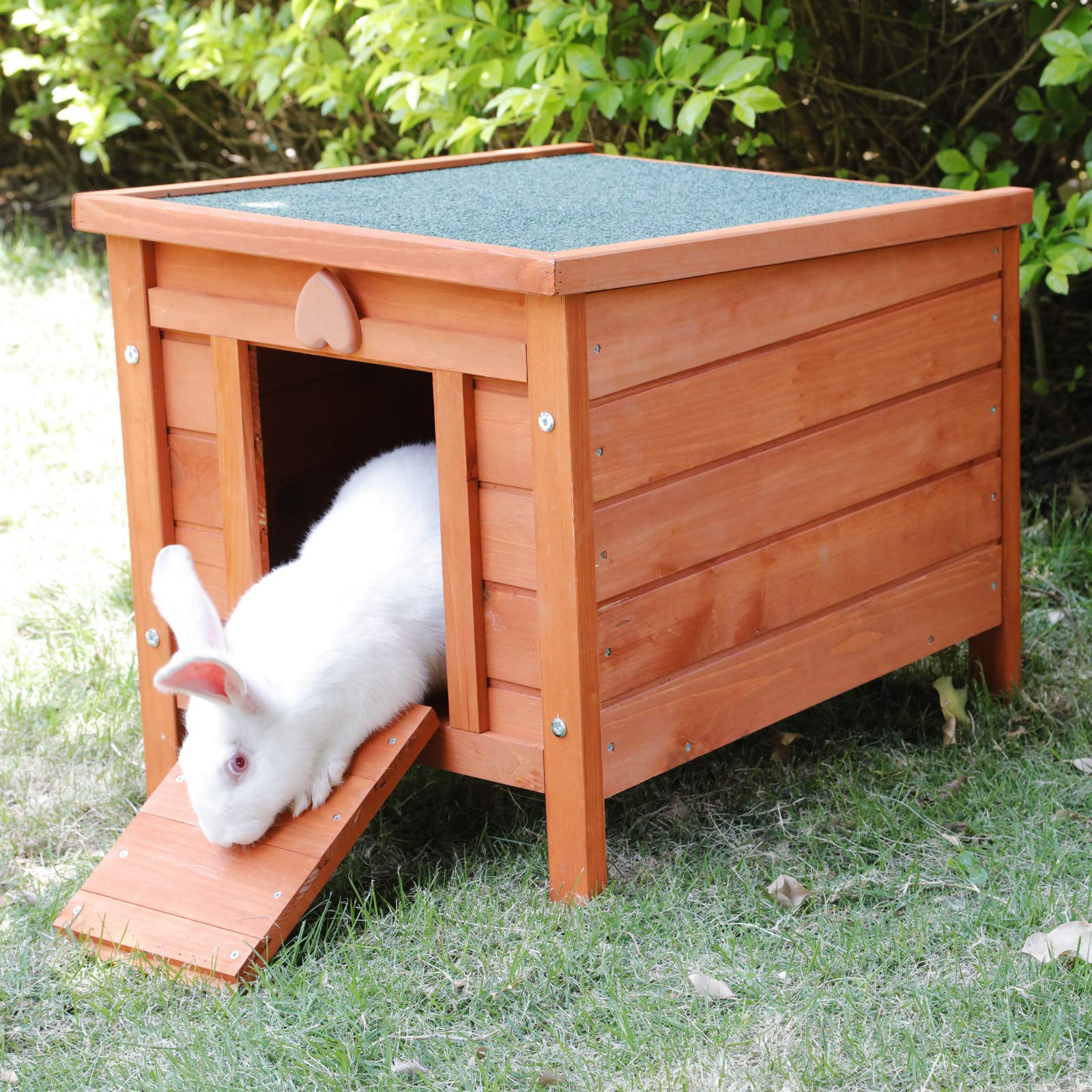 ROCKEVER Feral Cat Condo for Outdoor Cats Insulated, Wooden Bunny House Outdoor Autumn Blonde by ROCKEVER