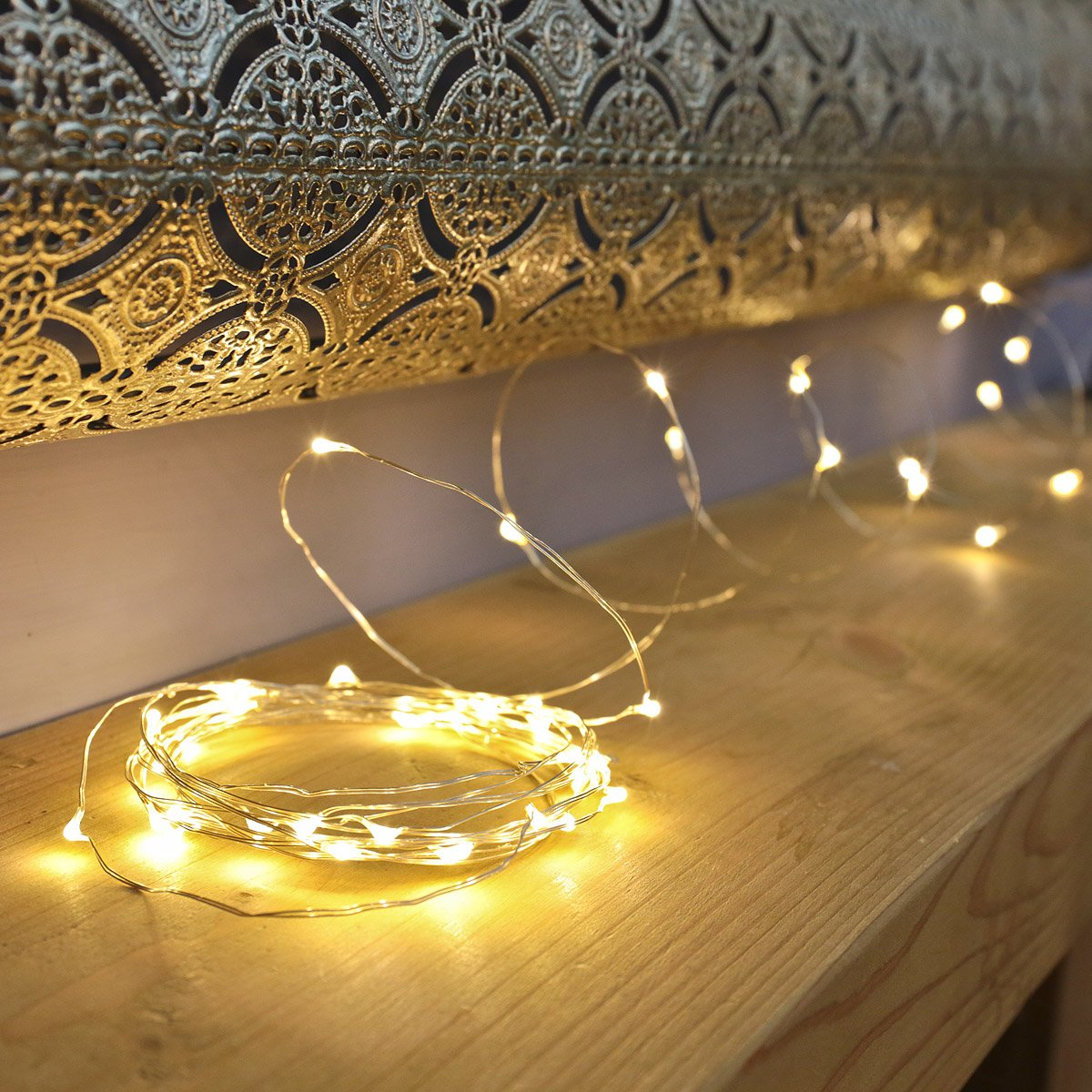 LED Wire Lights with 100 Warm White LEDs on Silver Wire by Qbis ...