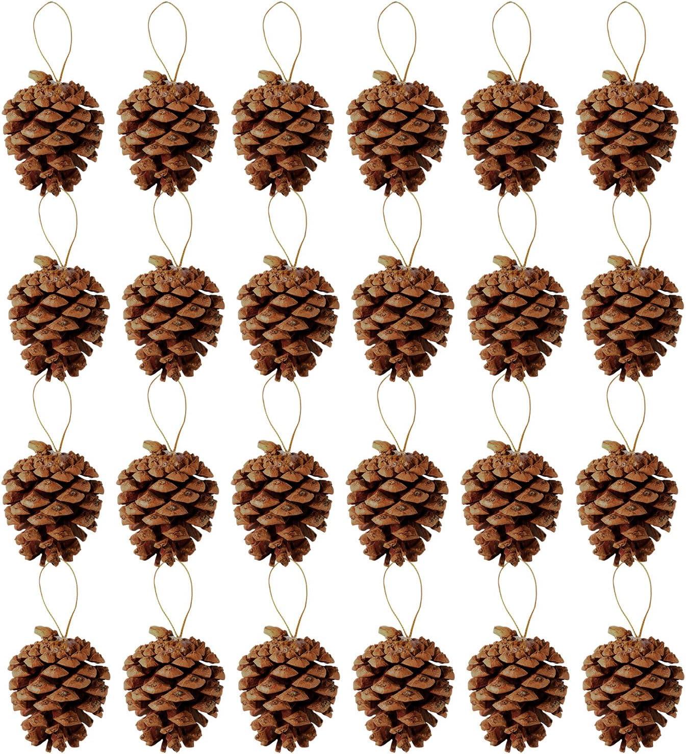 Keriber 24 piezas de conos de pino de Navidad 3.5-6cm con cadena ...