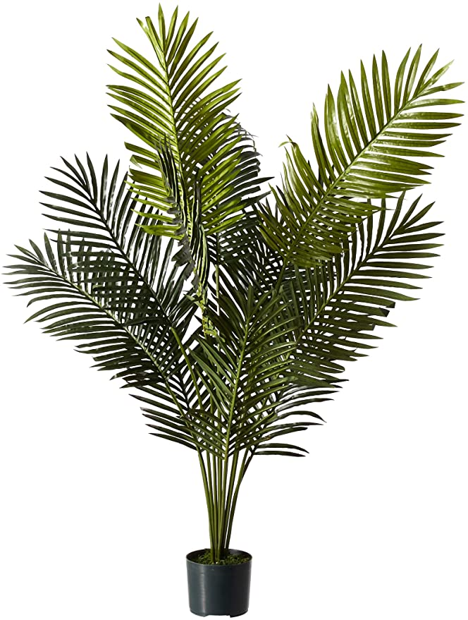 Amazon Com Nearly Natural 5ft Paradise Palm Artificial Plant 46x44x60 Green Home Kitchen