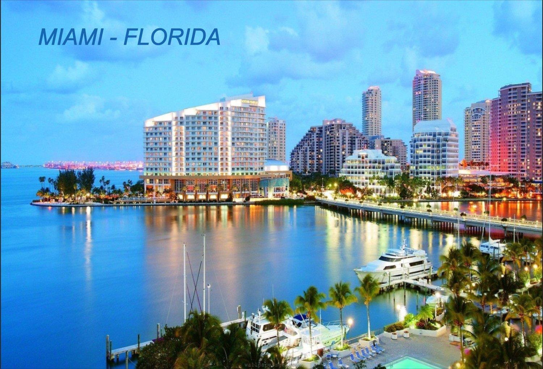 Florida USA United States Fridge Refrigerator Magnets (City: Miami #O5)