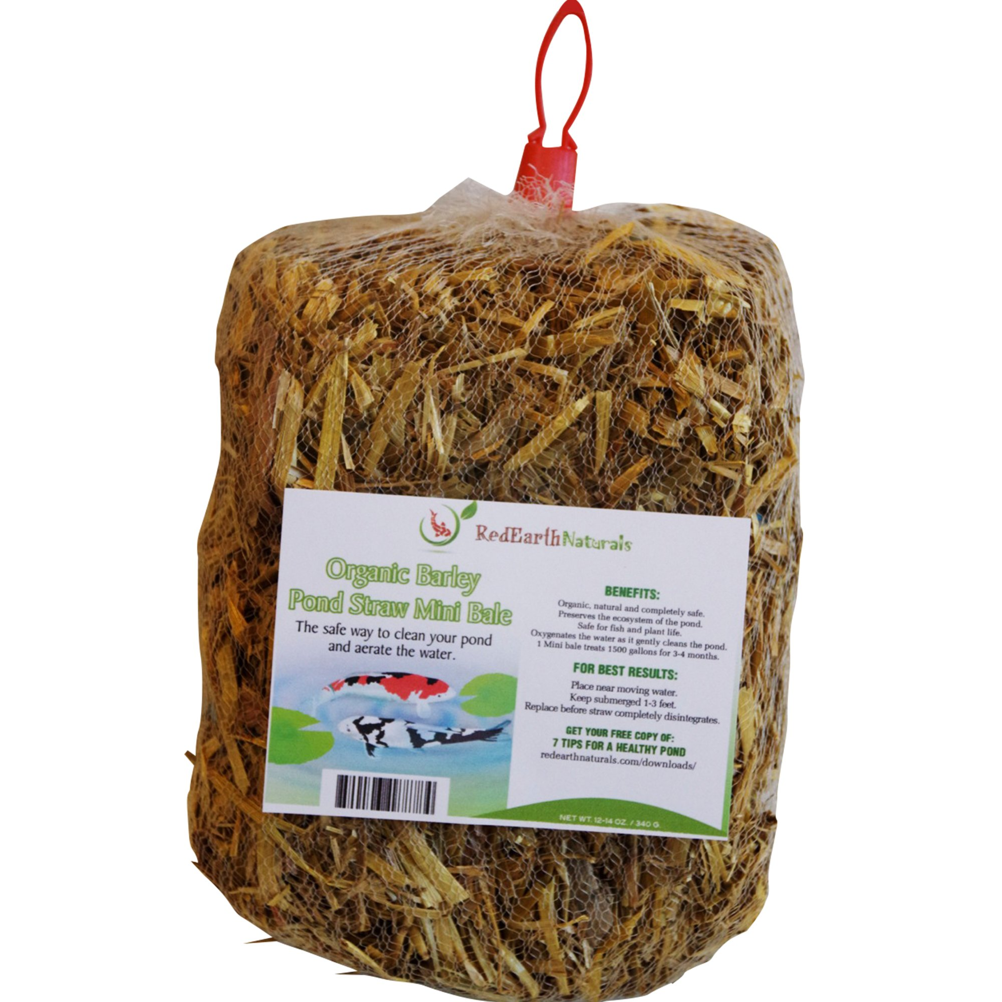 POND CLARIFIER for PROUD KOI POND OWNERS - Premium & Organic - Barley Straw for Ponds Mini Bale - Cleans Koi Ponds & Water Gardens the Safe Natural Way by Red Earth Naturals