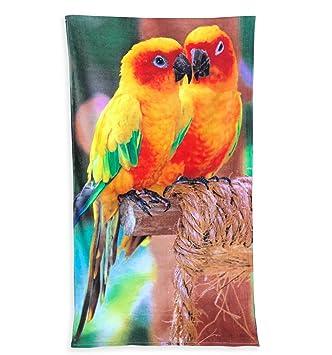 tex family Toalla Playa fotográfico de esponja tamaño grande cm.86 x 160 loros: Amazon.es: Jardín