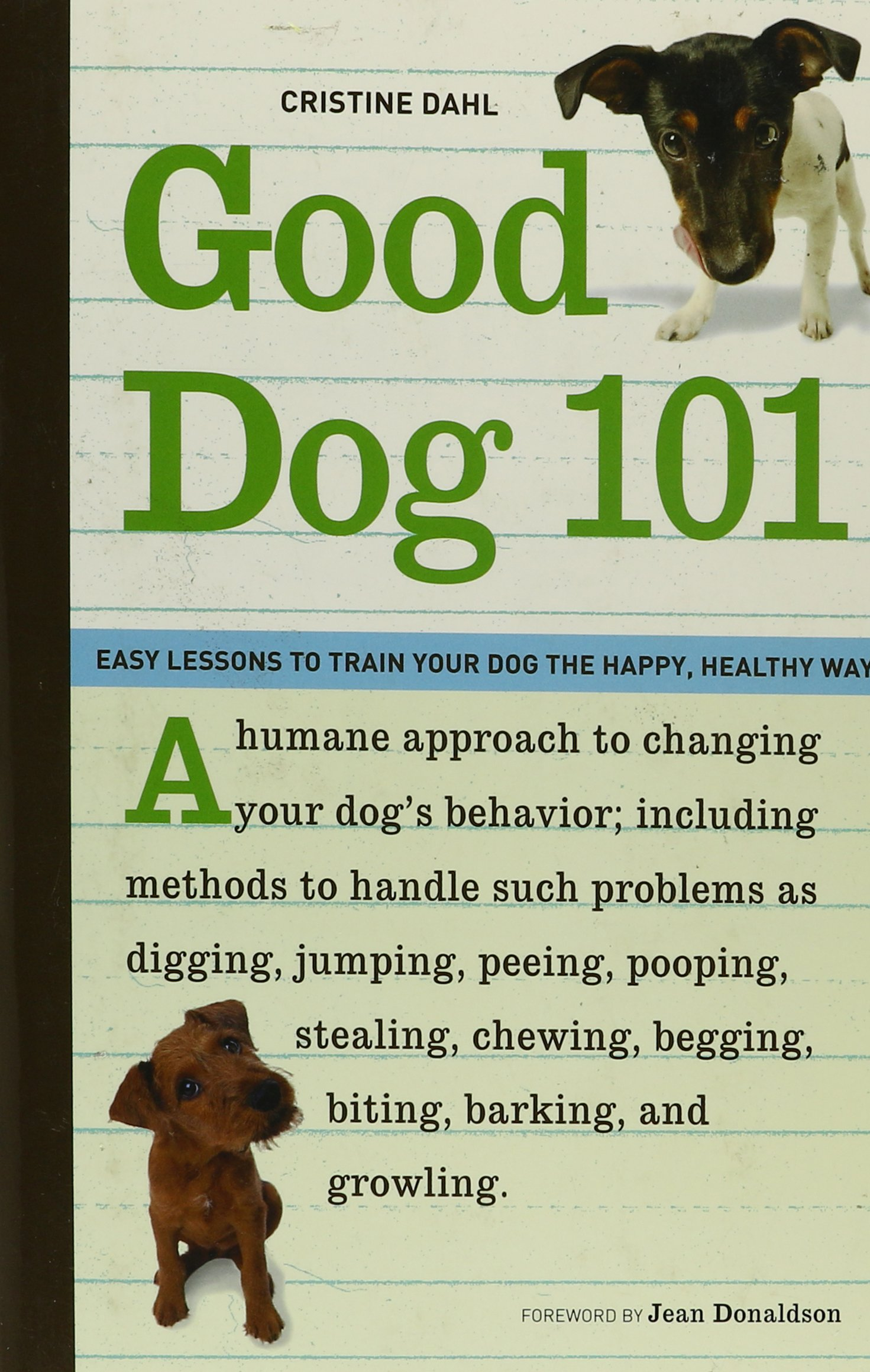 Good Dog 101 Lessons Healthy product image