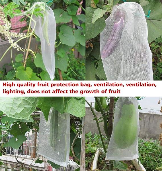 Amazon.com: COMPATH 50 bolsas de protección de frutas ...