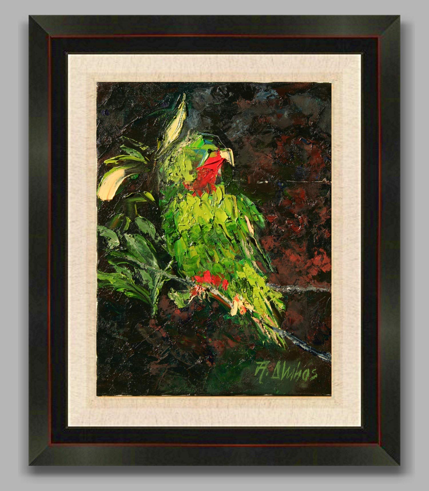Conure red throated parrot by internationally renown painter Andre Dluhos