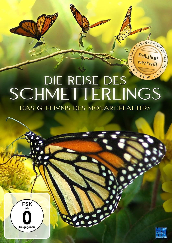 Wunderbar Monarchfalter Malvorlagen Drucken Ideen - Entry Level ...