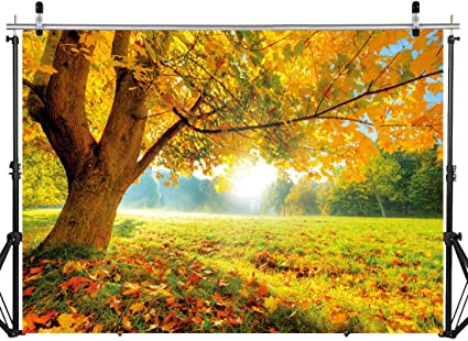GoEoo 10x8ft Fall Scenery Background Rustic Autumn Maple Leaves Landscape Photography Backdrop Rural Nature Photo Studio Props Idyllic Countryside Holiday Party Decoration Vinyl Banner
