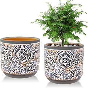 2 Pack Ceramic Plant Pots, Vivimee 5 Inch Flower Pot Set, Planter Set with Drainage Hole for Indoor Plants, Cactus, Succulent, Snake Plants, Bamboo, Clay Pottery Garden Pots for Outdoor Plants