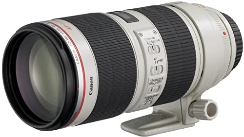 Canon 望遠ズームレンズ EF70-200mm F2.8L IS II USM フルサイズ対応のサムネイル画像