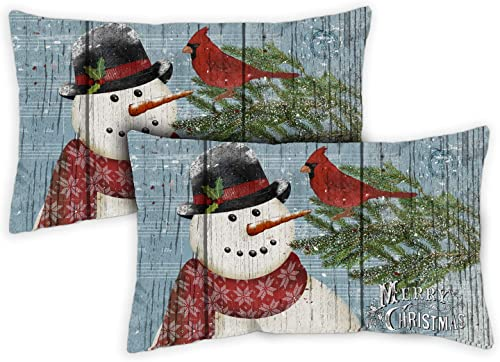 Toland Home Garden 731286 Joy to The World Snowman 12 x 19 inch Indoor Outdoor, Pillow with Insert 2-Pack