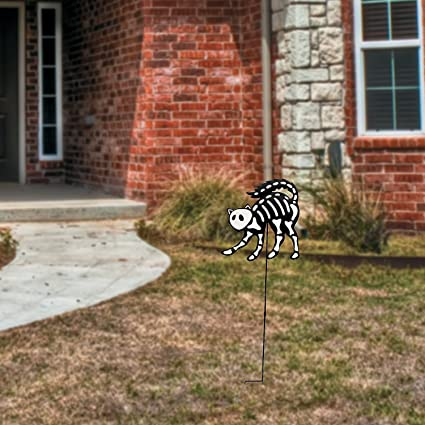 Amazon com : Fun Express Skeleton Cat Yard Stake : Garden