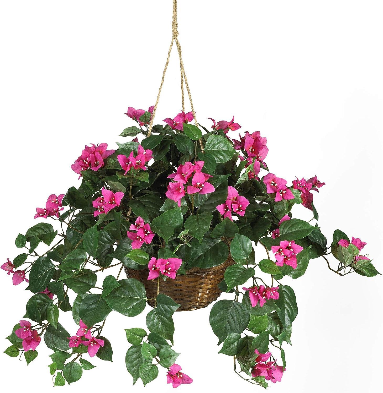 Nearly Natural 6608 Bougainvillea Hanging Basket Decorative Silk Plant Beauty Amazon Ca Home Kitchen