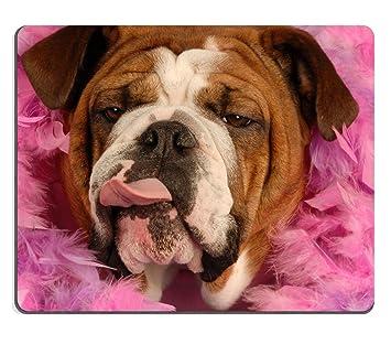Jun XT juegos alfombrilla de ratón de perro salchicha diseño de perro en una cama de rosas imagen ID 4190576: Amazon.es: Oficina y papelería