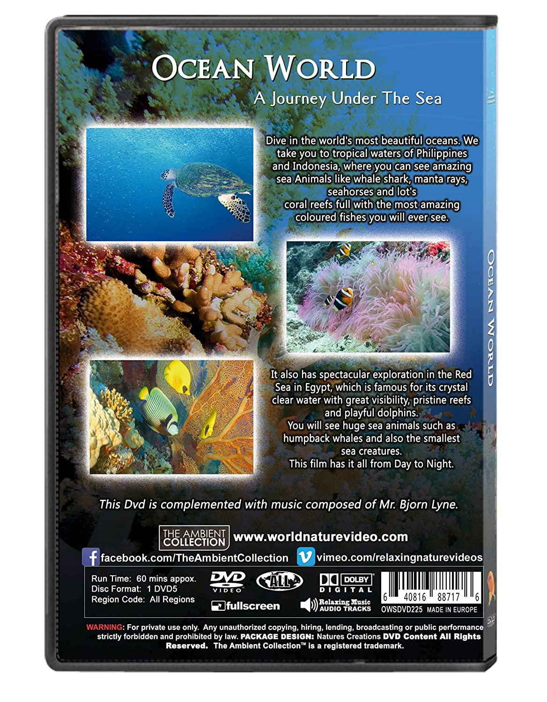 Amazon com: Underwater DVD - Ocean World - Underwater