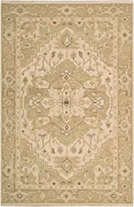 Nourison Nourmak (S189) Beige Rectangle Area Rug, 5-Feet 10-Inches by 8-Feet 10-Inches (5'10