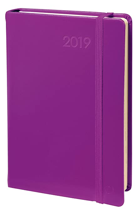 Quo Vadis 617007Q - Agenda 2020 Daily Pocket Multilingüe Habana, Color Morado