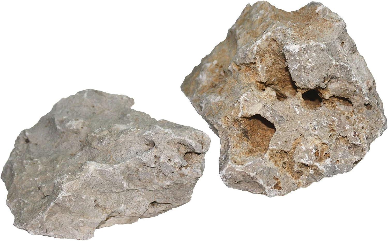 ICA TR37 Rocas Naturales Bio
