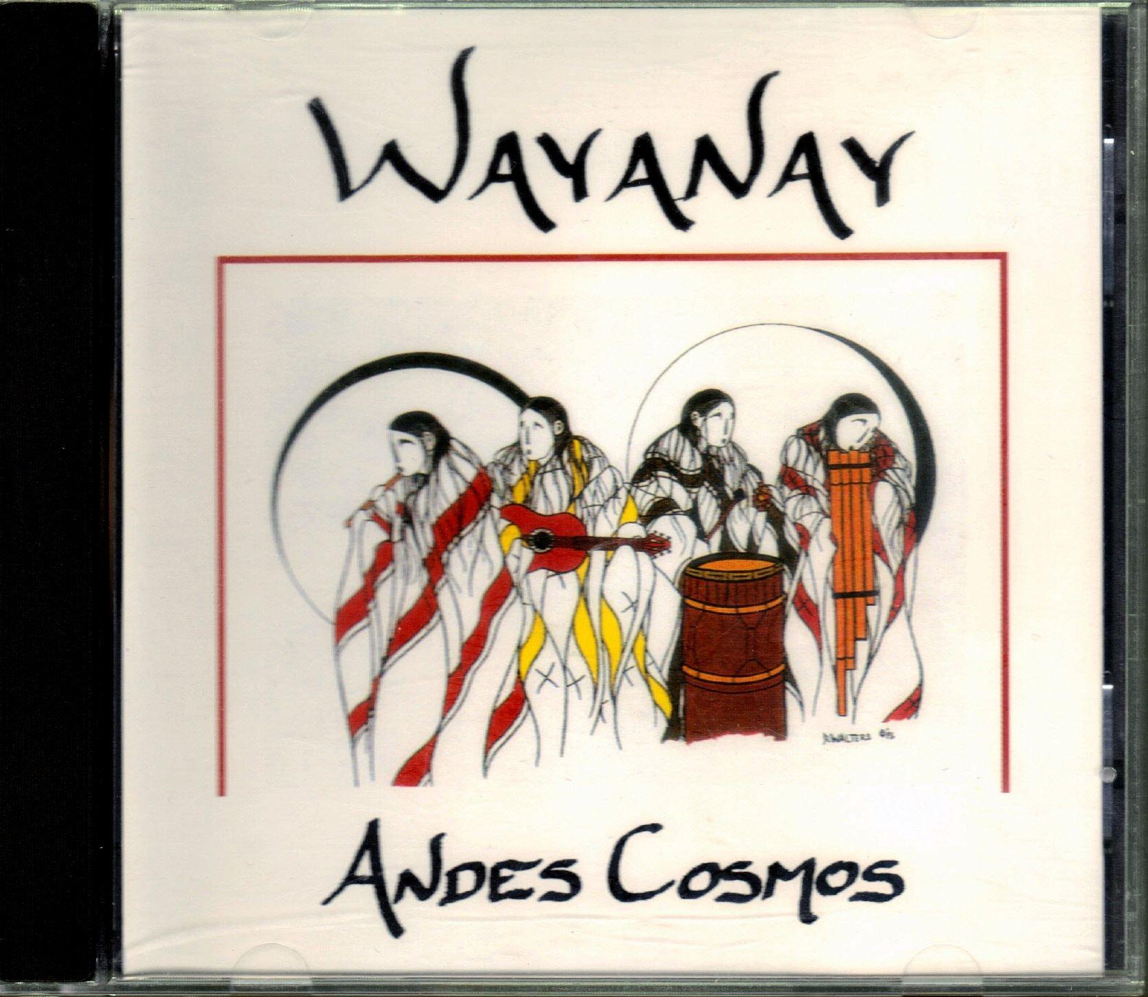 Andes Cosmos