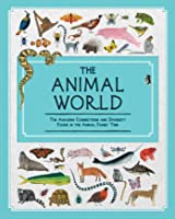 The Animal World: The Amazing Connections And