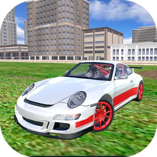 Racing Car Driving Simulator ()