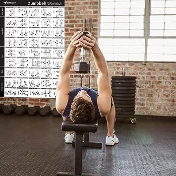 tonifit Dumbbell Fitness Póster de entrenamiento ...