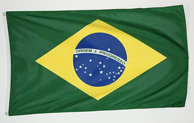 Michael & Rene Pflüger Barmstedt® - 4250517113946 - Bandera Brasil - Plástico Peso 100 gr/m2 (.) - Tamaño: 90 x 150 cm - izado: latón ojales de: Amazon.es: ...