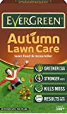 EverGreen Autumn Lawn Care Carton, 3.5 kg