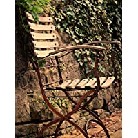 Notebook: Chair seating furniture outdoor out ivy fern
