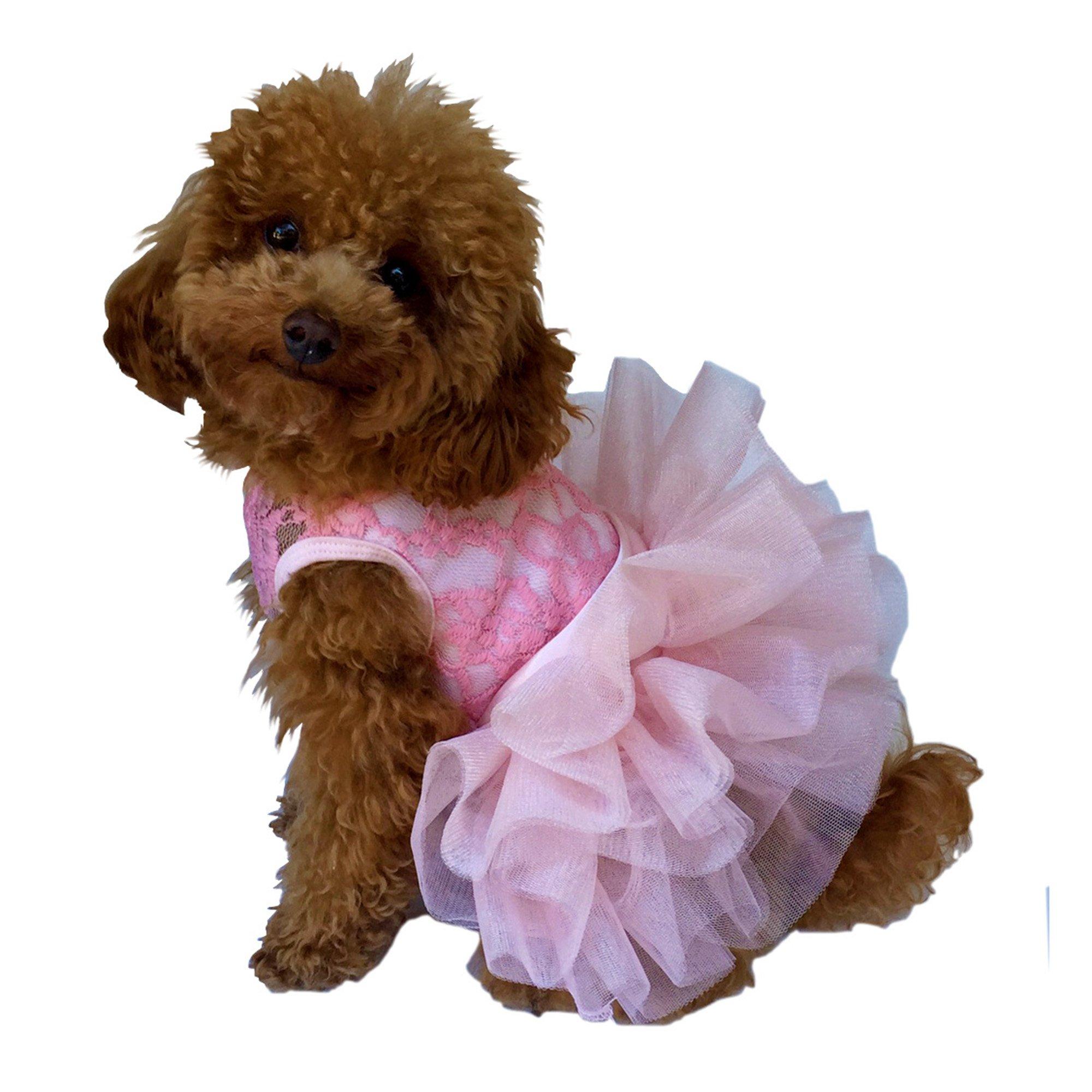 The Dog Squad The Fufu Tutu Dress, Small, Pink
