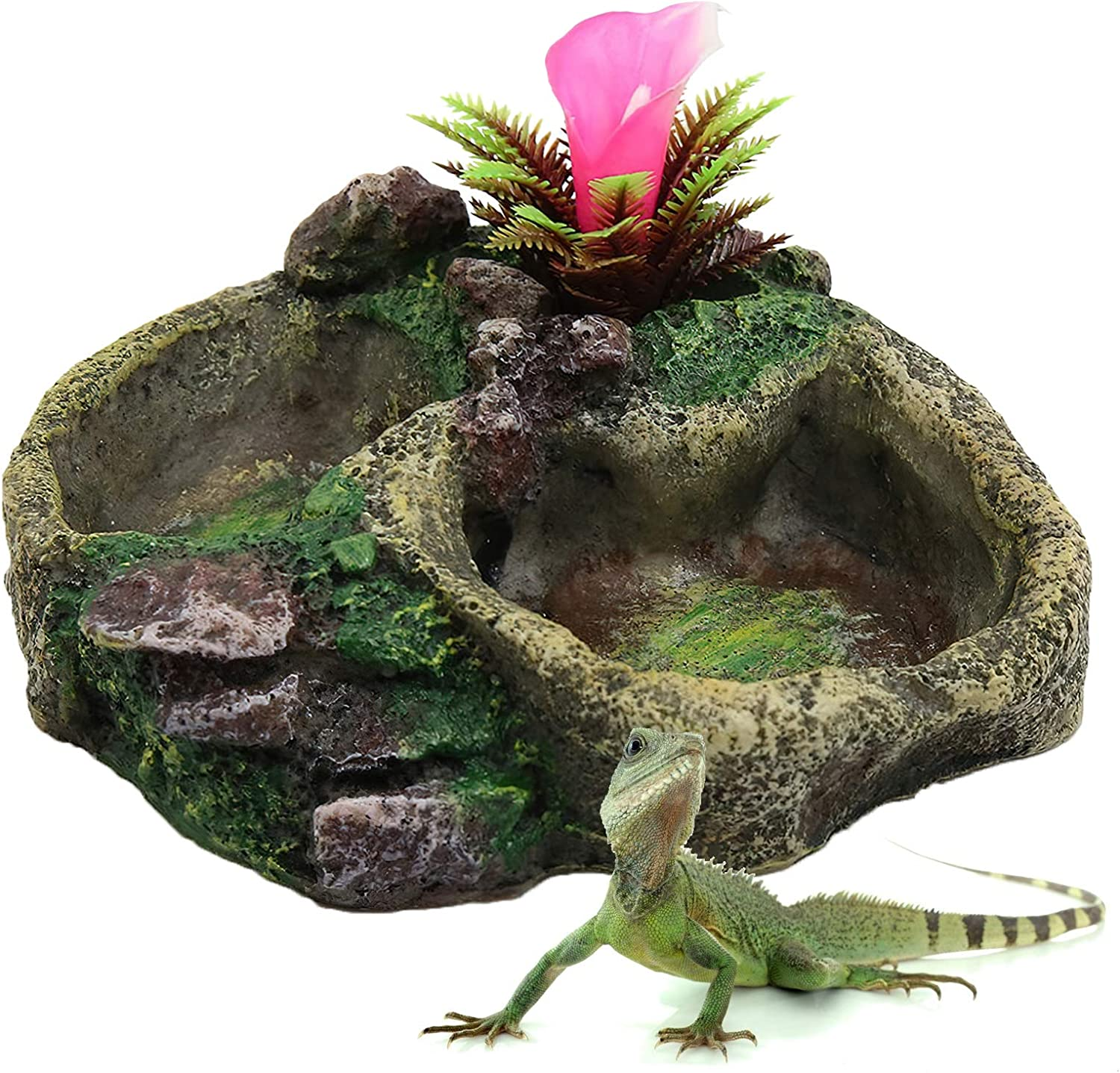 iFCOW Resin Feeder Bowl, Reptile Water Dish Food Bowl Resin Feeder Bowl for Tortoise Lizard