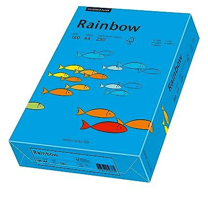160 g//m2 250 fogli Rainbow colore: arancione intenso Multi-Purpose Paper Fogli colorati A4 Schneiders/öhne 88042461
