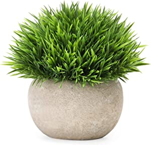 Mini Potted Artificial Plants Faux Fake Greenery Plants for Home Office Table Desk Shower Kitchen Shelf Bedroom Bathroom Decoration Indoor Outdoor Decor (1 Pack) (Artificial Plants-1pcs)