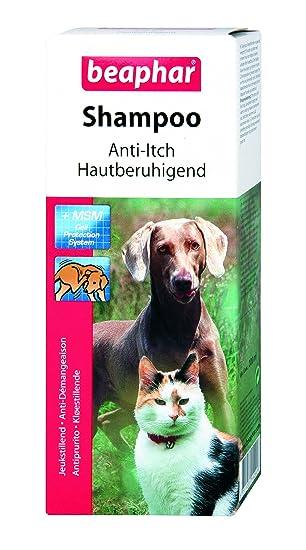 Amazon.com: Beaphar gato perro antipicores Champú + MSN 6.8 ...