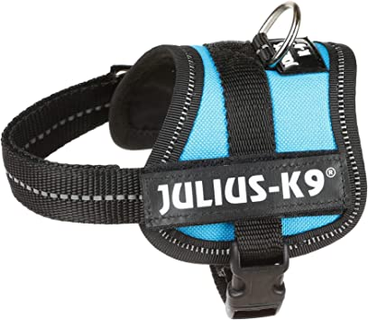 K9 Powerharness, Tamaño: Baby 1, Colore: Aguamarina: Amazon ...