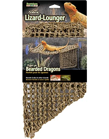 Amazon ca: Terrariums - Reptiles & Amphibians: Pet Supplies