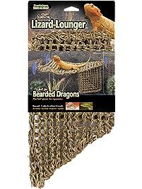 Amazon Com Reptiles Amp Amphibians Pet Supplies Terrarium