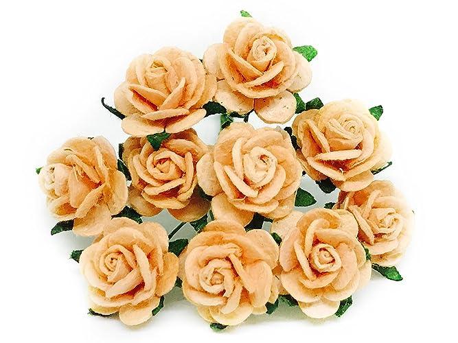 Amazon 12 peach orange paper roses mulberry paper flowers 12quot peach orange paper roses mulberry paper flowers miniature flowers mightylinksfo