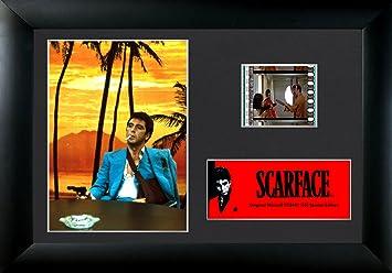 Amazoncom Scarface Tony Montana Every Dog Has Its Day
