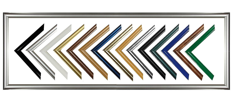 Biggy Kunststoff Bilderrahmen Bilderrahmen Bilderrahmen 70x120 cm 120x70 cm Farbauswahl  hier Silber viele Größen mit spiegelfreiem Acrylglas 1e2ec7