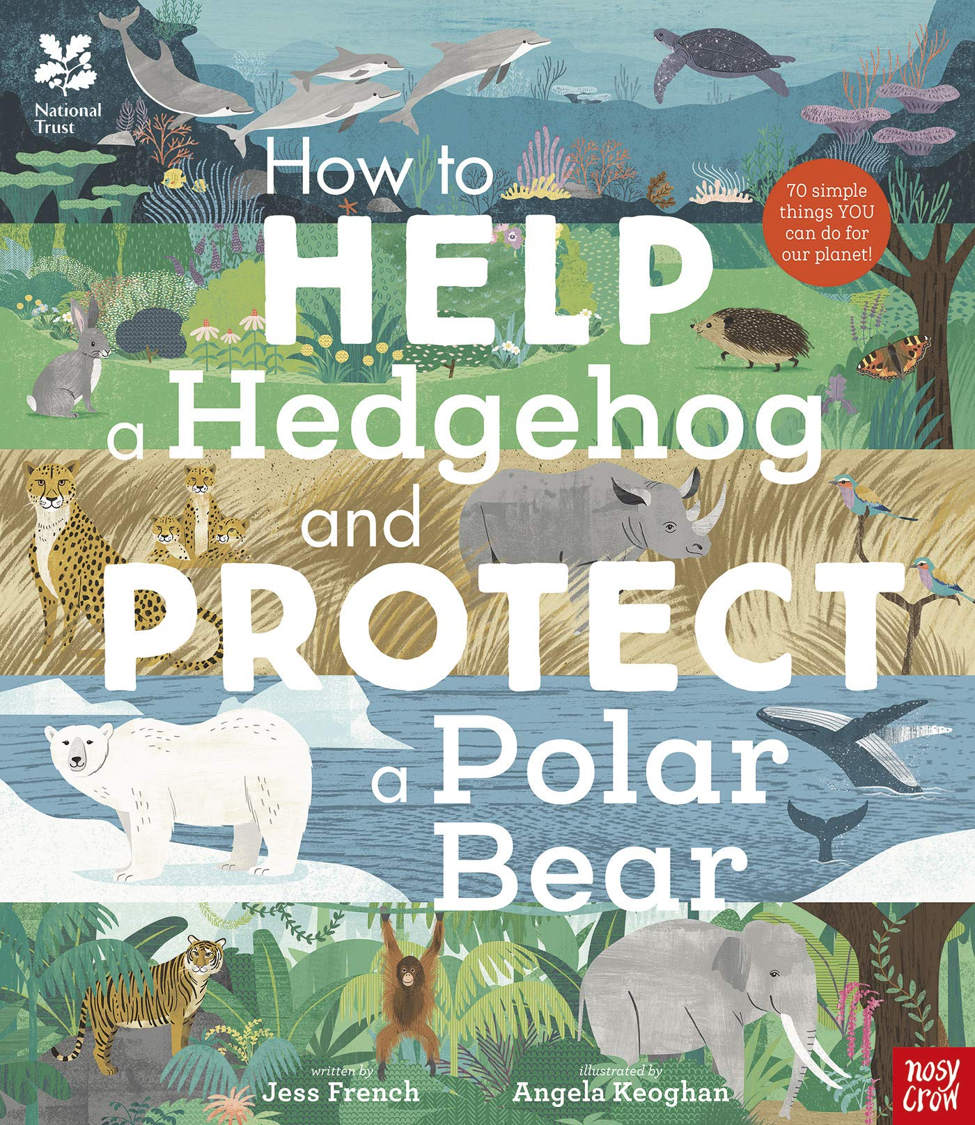 National Trust: How to Help a Hedgehog and Protect a Polar Bear:  Amazon.co.uk: Jess French, Angela Keoghan, Angela Keoghan: 9781788002578:  Books