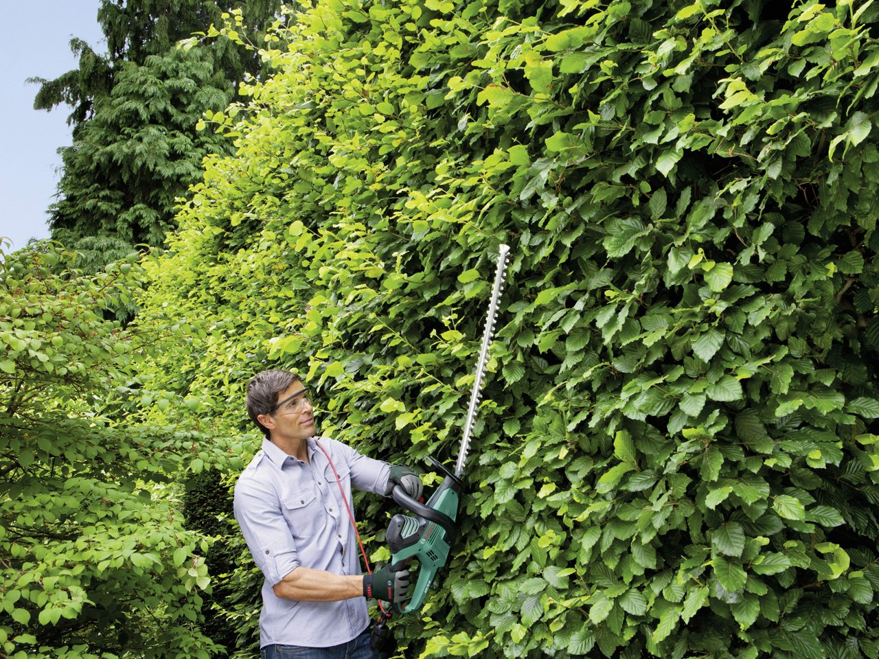 Verde//Nero Bosch Home and Garden 0600847K00 Tagliasiepi 700 W