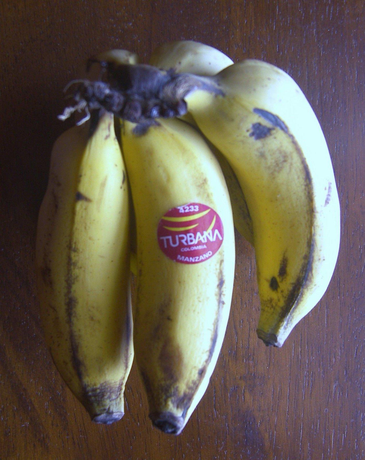Manzano ''Apple'' Banana Plant ***Rare*** Live Manzano ''Apple'' Banana Tree